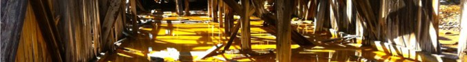 cropped-gruveslam-i-vannspeil.jpg